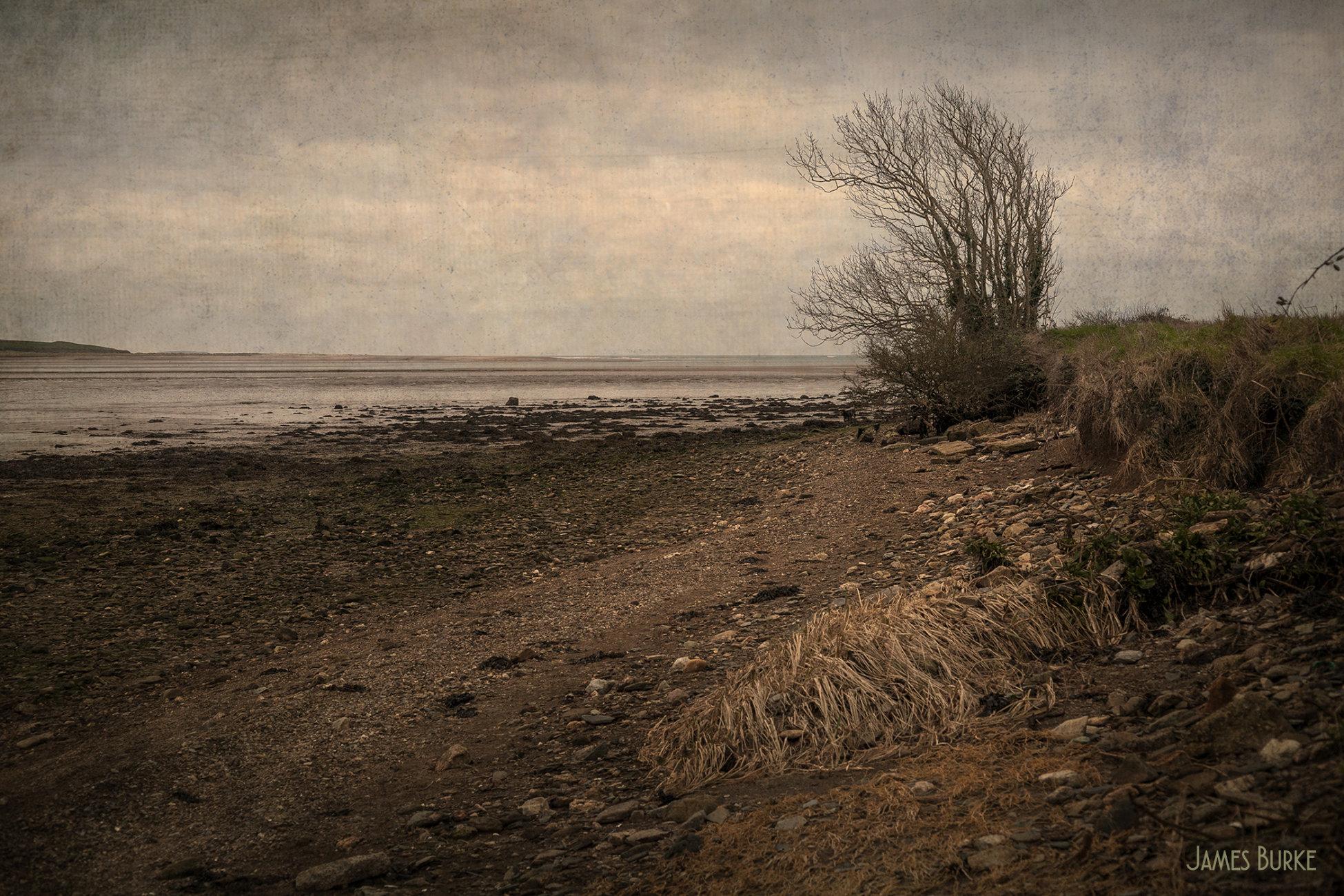 Estuary No.2