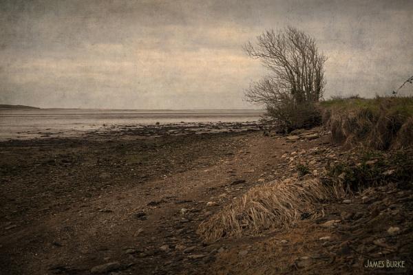 Estuary No.2 by jameswburke