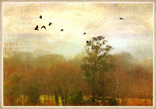 Digital Art by Snaphappyannie