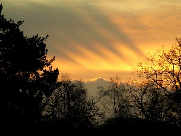 Sunrise rays by SUE118