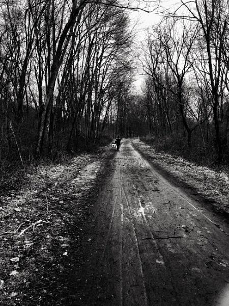 Out Walking by Merlin_k