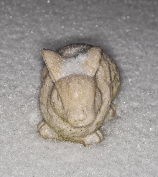 Rabbit in the Snow by Merlin_k