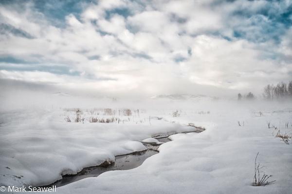 On the fields of winter by mlseawell