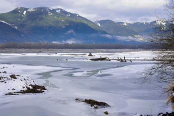 The Fraser river near Chilliwack BC CA