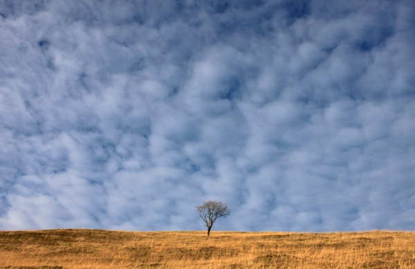 Wharmton Hill by michaelfox