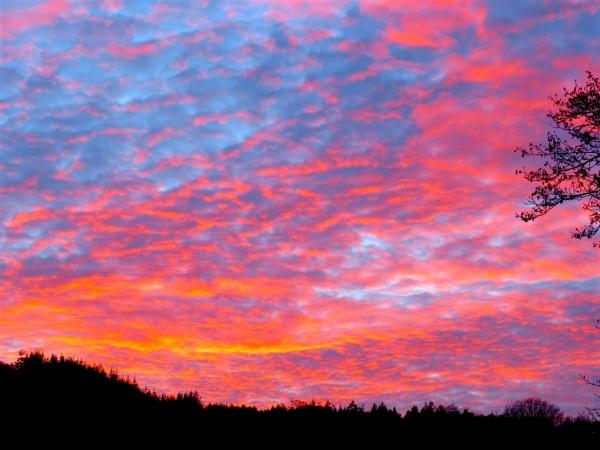 Sunset from the Studio by ddolfelin
