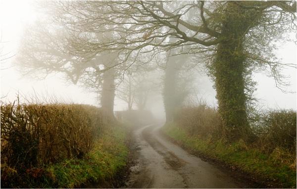 Wintry Lane 3 by dark_lord
