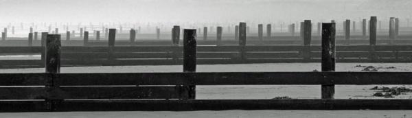 Groynes by oldgreyheron