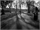 January Park