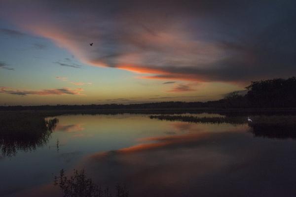 Twilight by jbsaladino