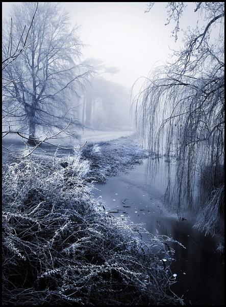 Shropshire Frost. by Niknut