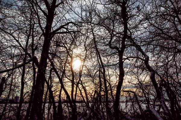 Sunshine by FrancisChiles