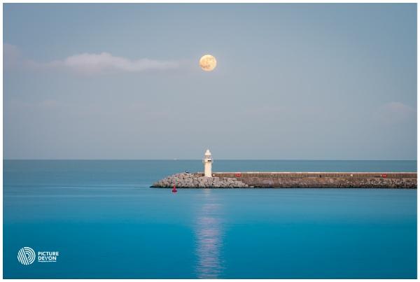 Moonlit by PictureDevon