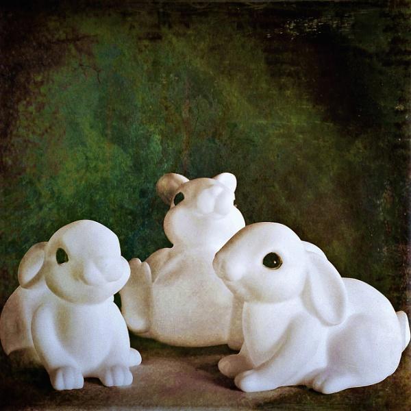 Three Little Bunnies by LoryC