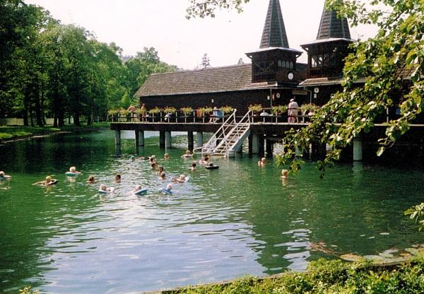 Lake Heviz.  Hungary by Don20