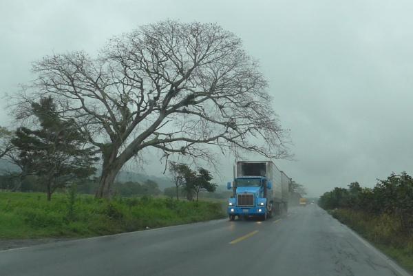 Wet road by pedromontes