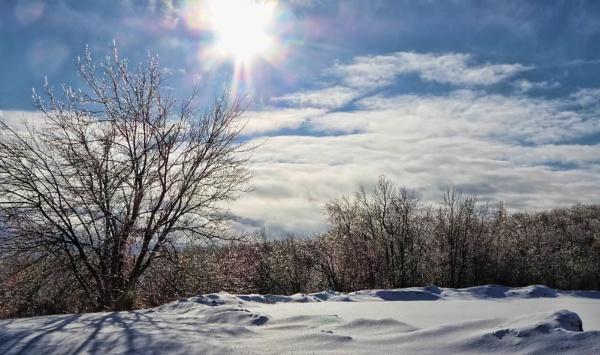 Winter Sun 2 by Joline