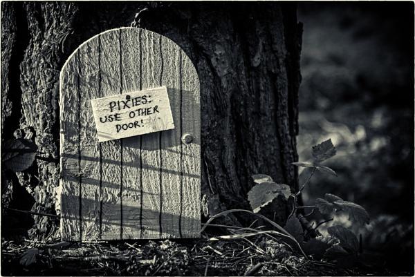 The front door by mrswoolybill