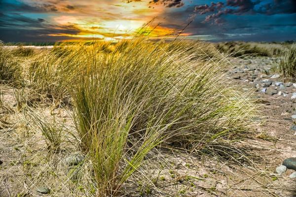 On a beach by alandeja