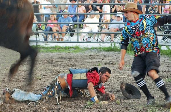 Bull Rider Down by jbsaladino