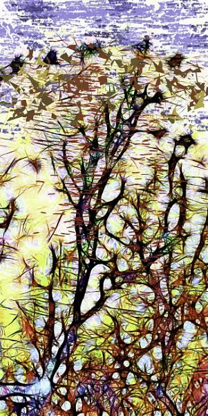 Cornish Tree by RLF
