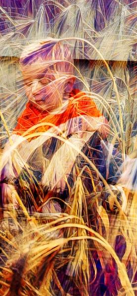 Grain & Grandson by RLF
