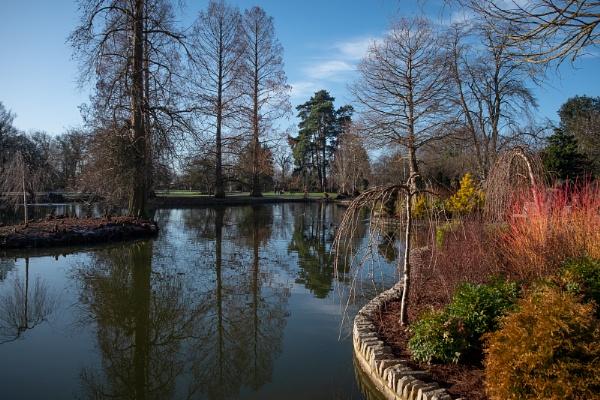 Seven Acres Lake by RolandC