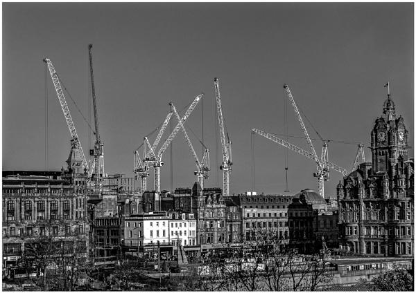 Cranes Galore by mac