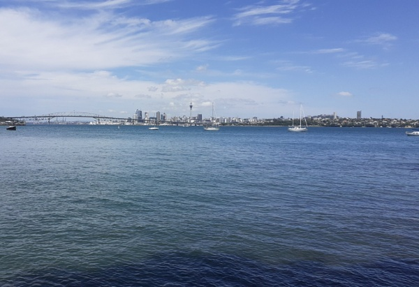 The Bay Auckland by prin