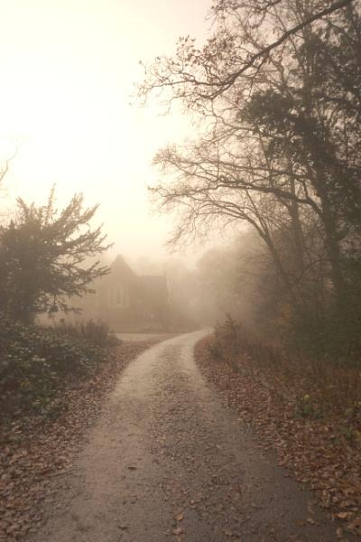 Foggy day by Stu74