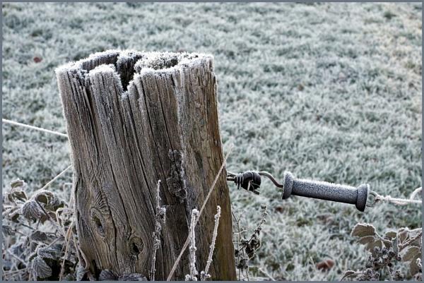 Frozen Details by kw