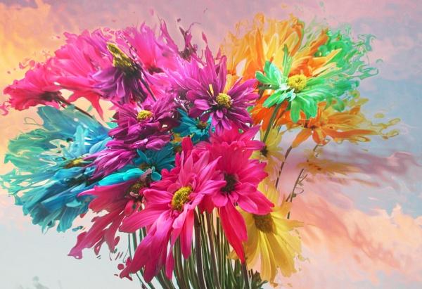 Splash of Colors by jrsundown