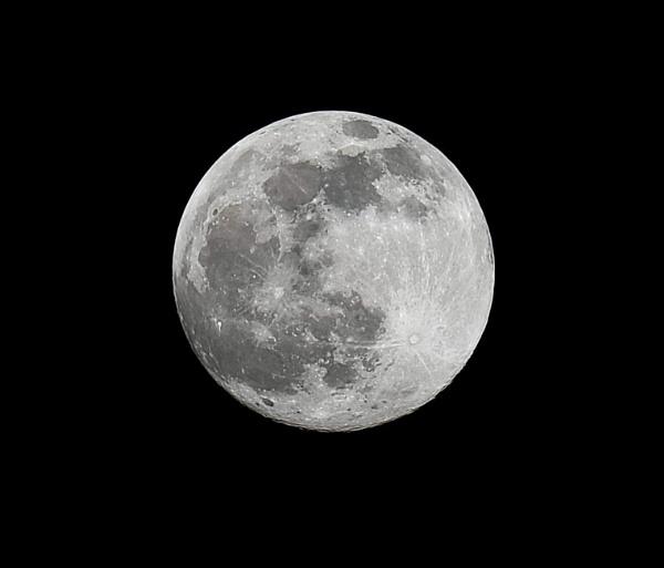Snow Moon by bluetitblue
