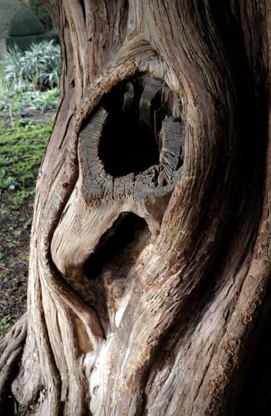 Hole by nclark