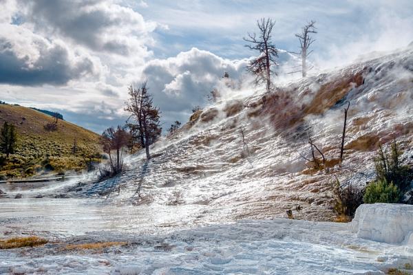 Mammoth Hot Springs by Phil_Bird