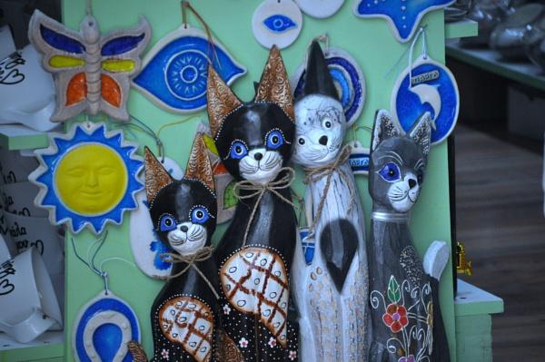 Cats, Gatos & Chats.... by Chinga