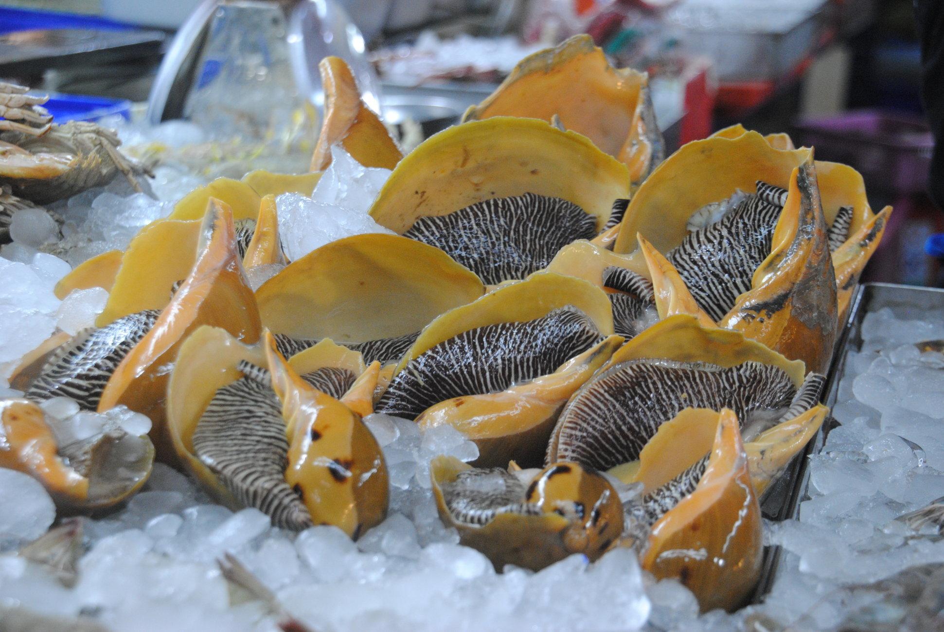 Marketing Sea Food...