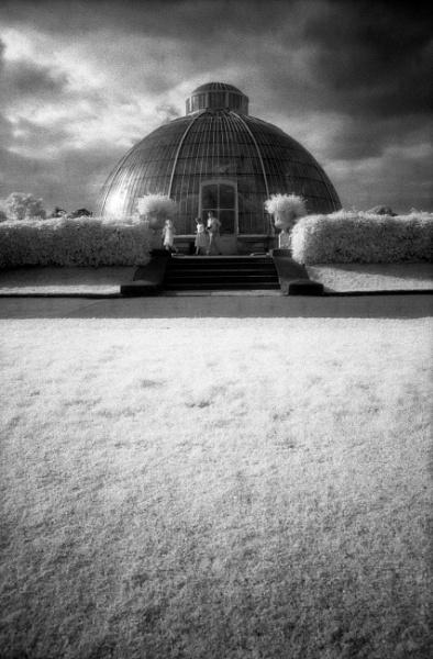 Palm House, Kew Gardens (IR) by trailguru