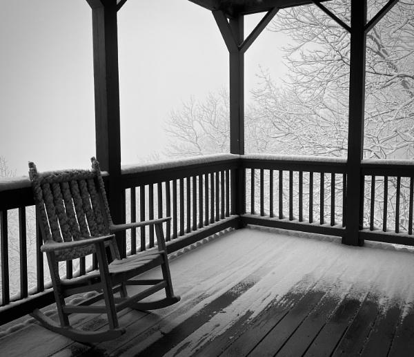Snowy Silhouettes by sheilajean48