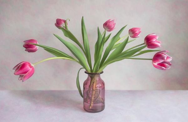 Valentines Tulips by Leedslass1
