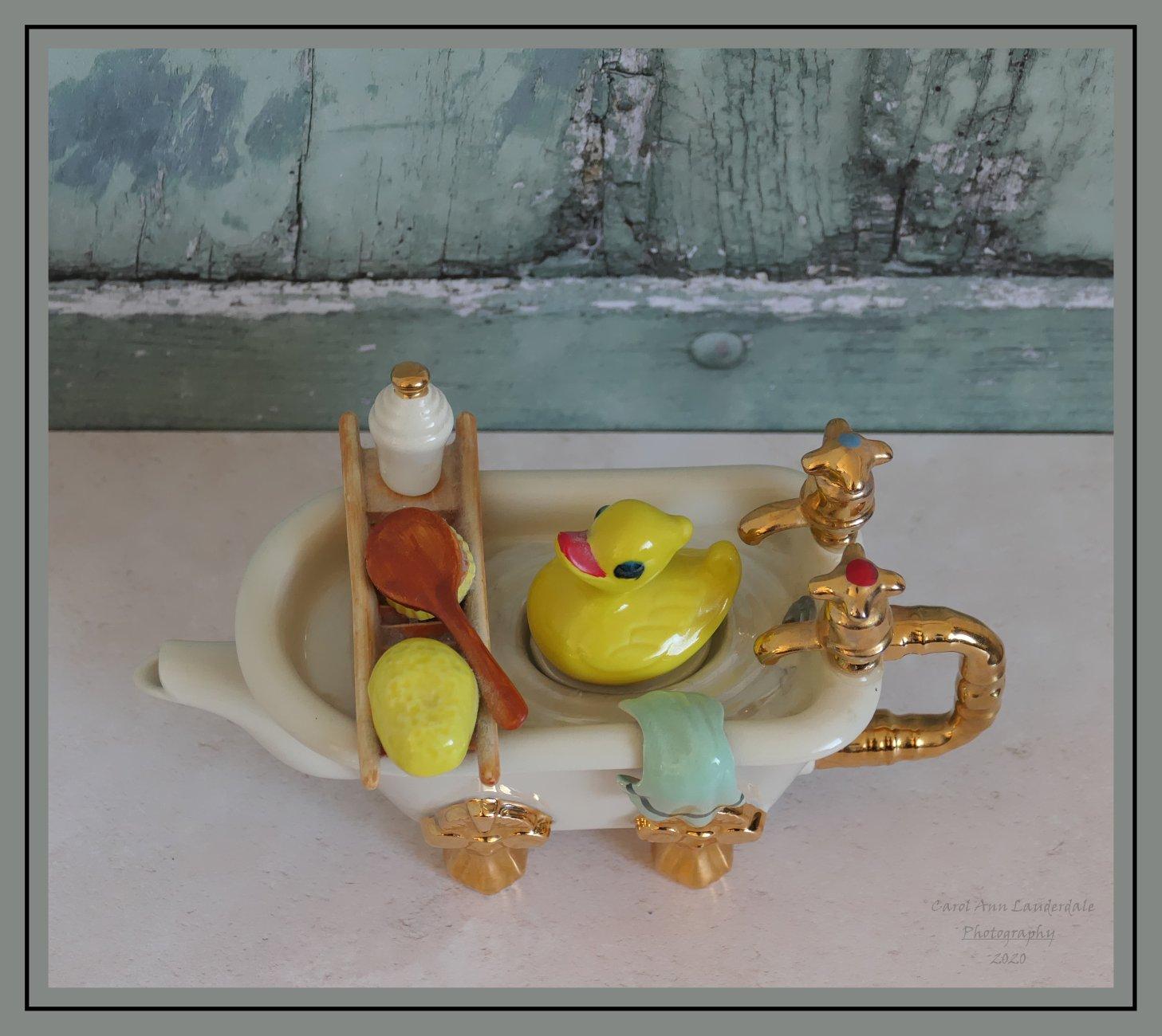 Duck takes a bath.