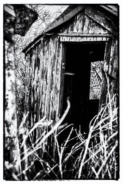 Half Hidden Hut by starckimages