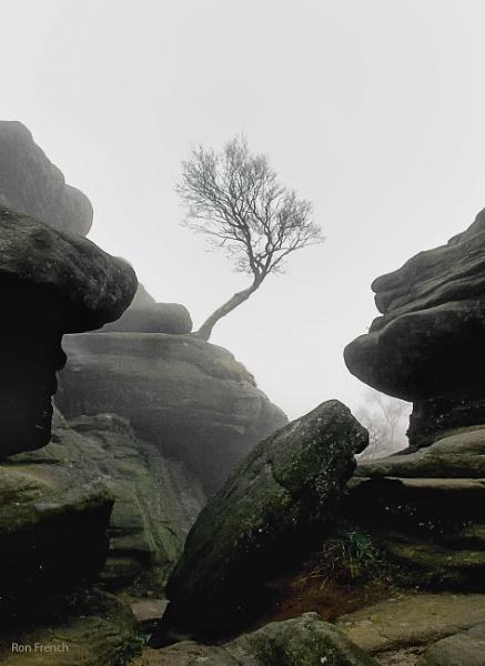 Brinham Rocks 3 by frenchie44