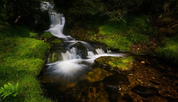 Highland Stream by douglasR