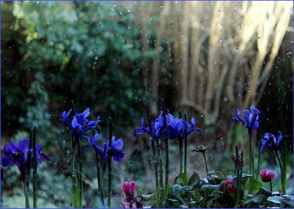 After the sun the rain, after the rain the sun. by helenlinda