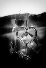 Photo : Hearts