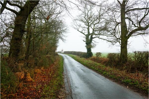 Wintry Lane 4 by dark_lord