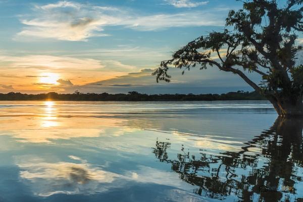 Cuyabeno sunset Laguna Grande by macxymum