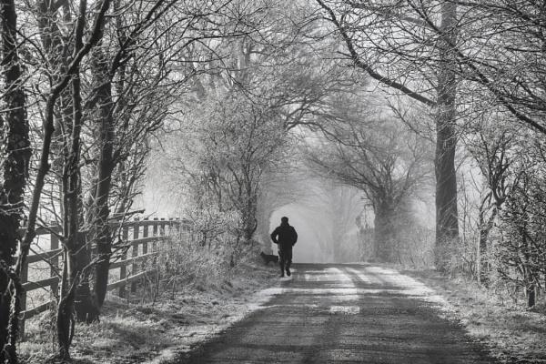 A Cool Stroll by Owdman