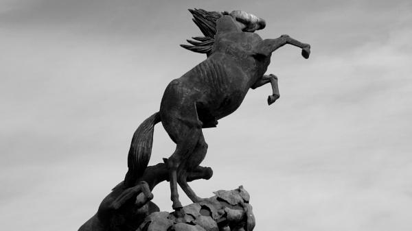 Mono. Horse statue. Vigo. Spain by Don20